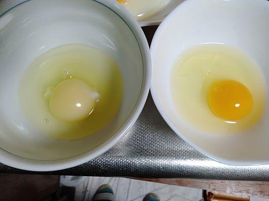 卵の色_c0162128_07582407.jpg
