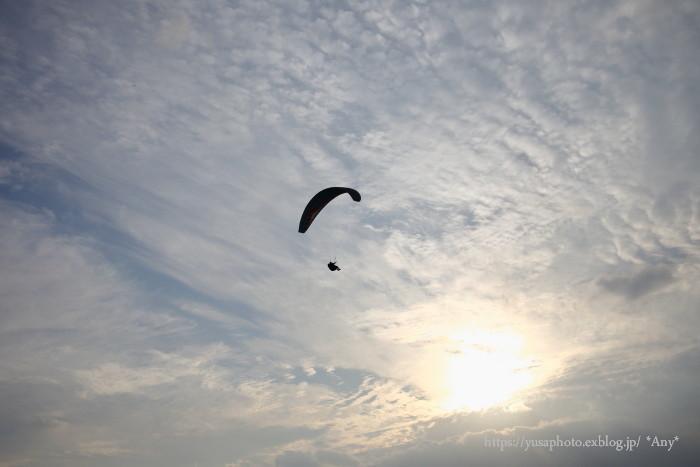 空を飛びたい_e0347431_23333283.jpg