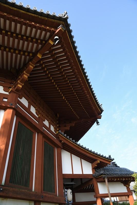 南円堂から・・・_e0374932_06252509.jpg