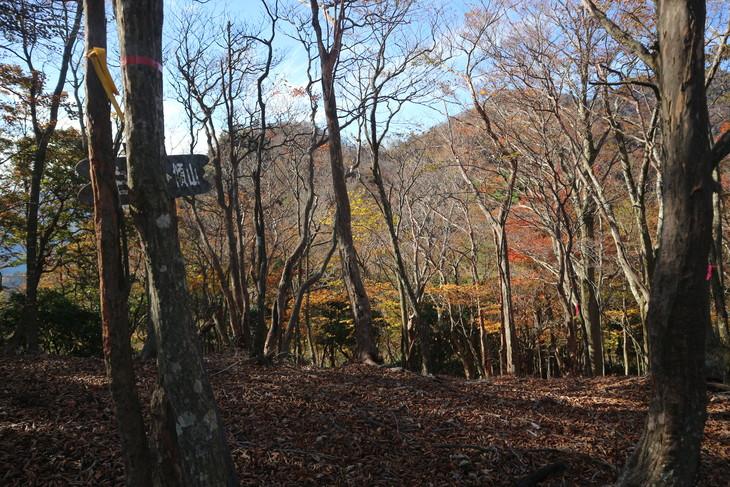 傾山山旅(冷水コース)_e0272335_513251.jpg