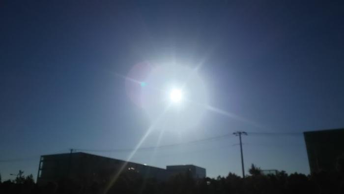 夏の盛り㊤_e0009056_13441398.jpg