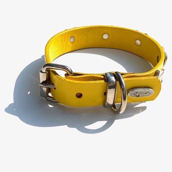 Dog La Heart COLLAR ドグラ ハート カラー 1インチ(2.5cm幅) 14インチ_d0217958_12200495.jpg