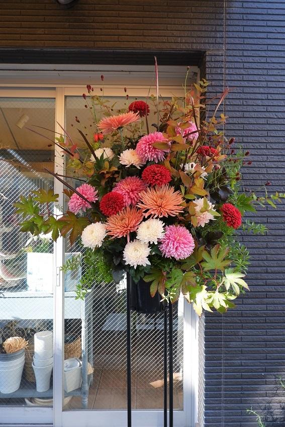 オークリーフ(大輪菊のスタンド装花)_f0049672_18543413.jpg