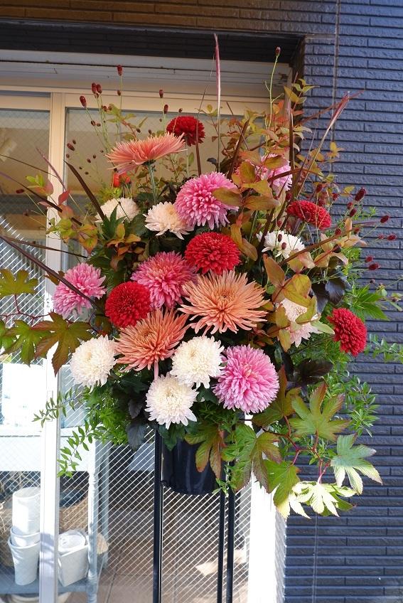 オークリーフ(大輪菊のスタンド装花)_f0049672_18544482.jpg