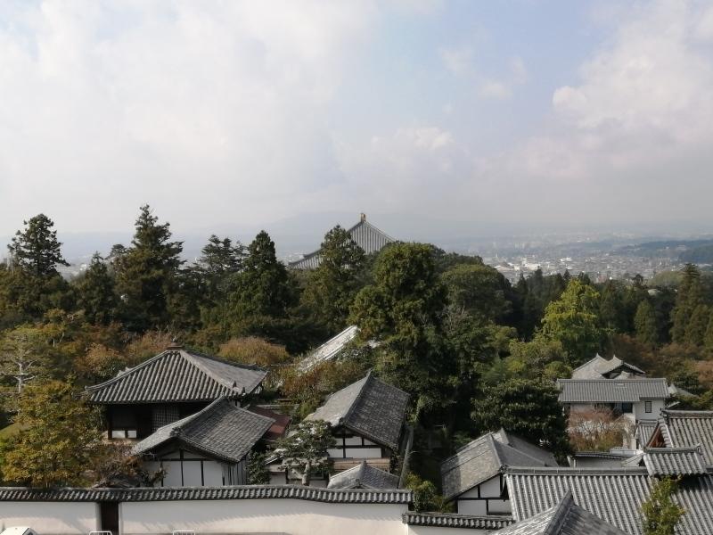 奈良旅 ②_f0374092_22311052.jpg