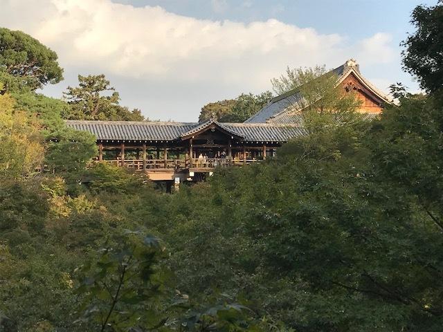憩和井東福寺店オープンしました_d0020139_00342365.jpeg