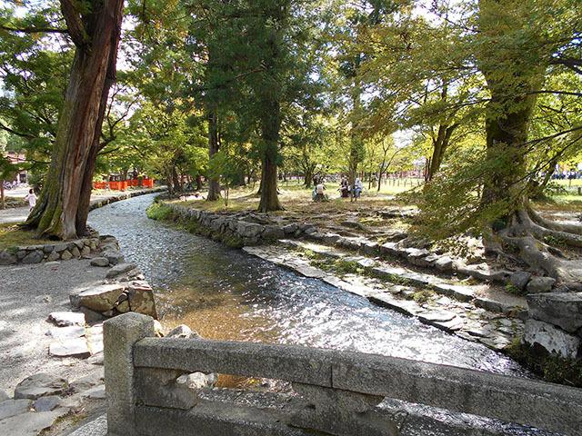 京都・上賀茂神社_a0099744_17374084.jpg