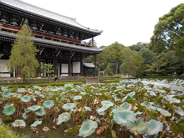 京都・東福寺(10月21日 月 2019年)_a0099744_17393230.jpg