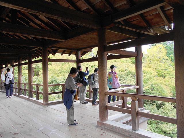 京都・東福寺(10月21日 月 2019年)_a0099744_17405853.jpg