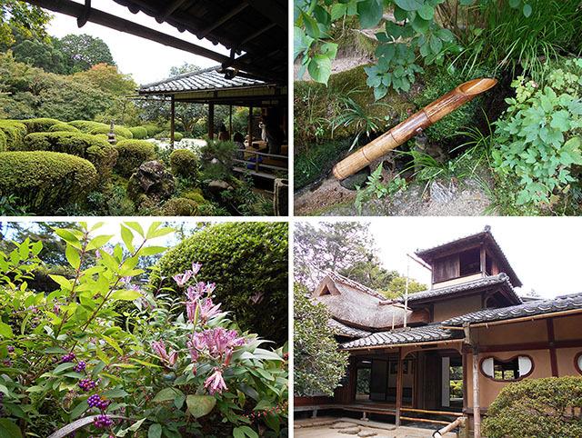 京都・詩仙堂_a0099744_17482754.jpg