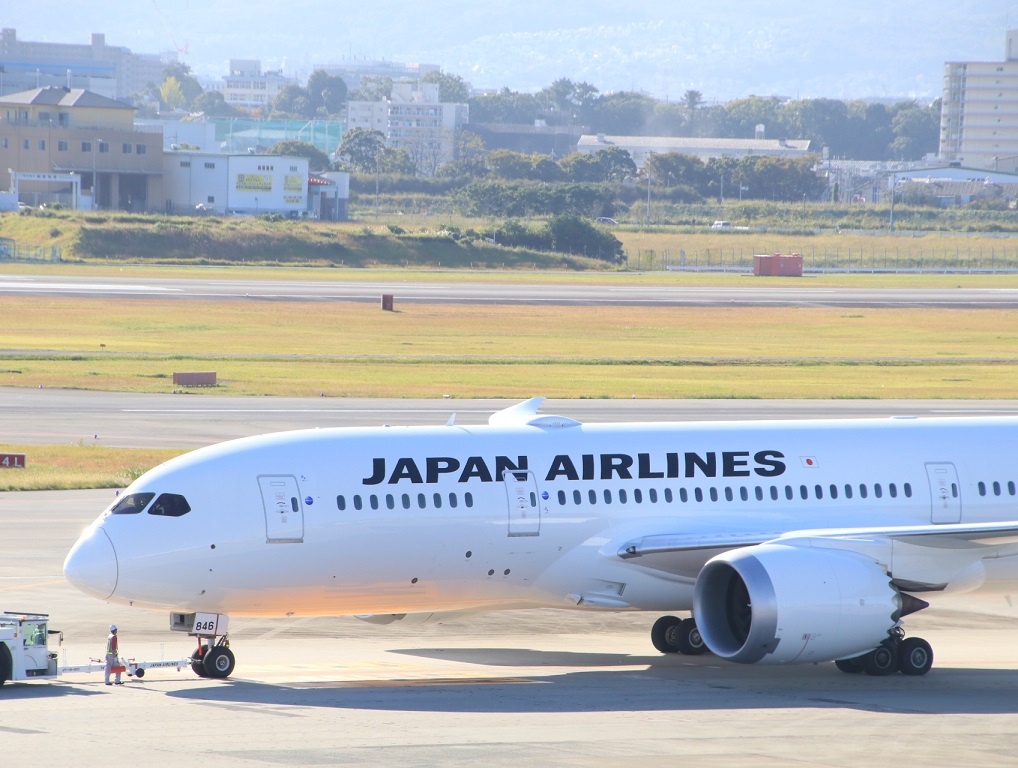 JAL 日本航空 B787-8 国内線仕様機_d0202264_2132105.jpg