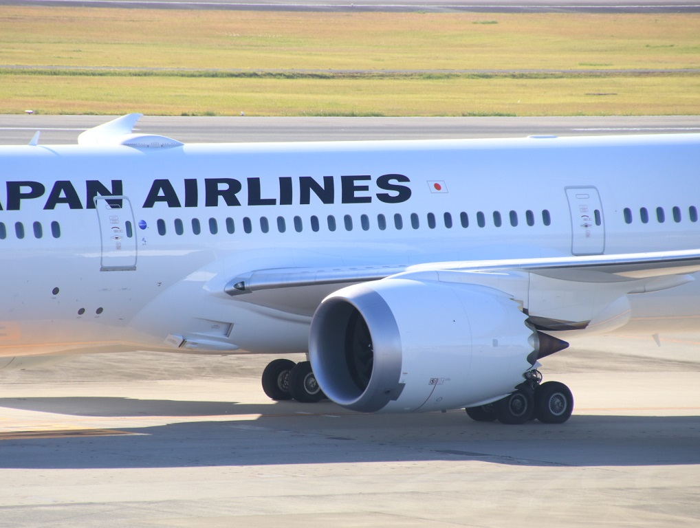 JAL 日本航空 B787-8 国内線仕様機_d0202264_21324054.jpg