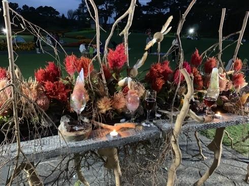 イベント出展や続々と入荷してくるお花に押され気味の日々_b0137969_06434271.jpeg