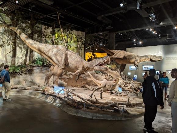 またまた、恐竜_d0193569_08131256.jpg