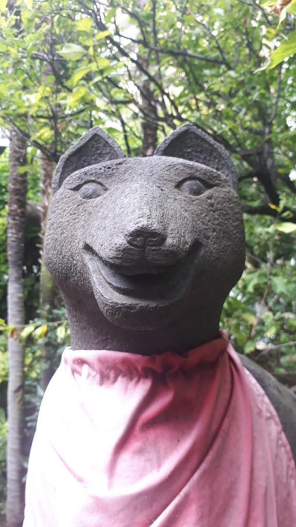 狐の気魅悪いこと_b0116271_01082756.jpg