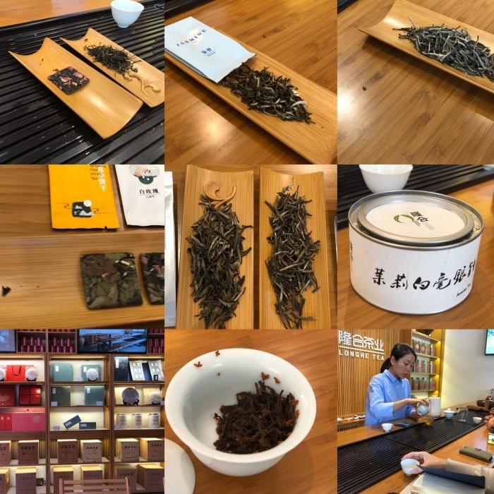 茶作りの理想郷 政和隆合茶葉有限公司_a0169924_21192840.jpeg