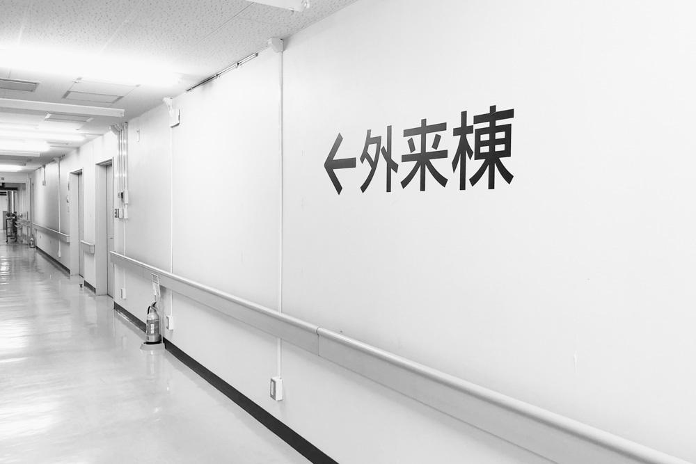 信州大学医学部附属病院の廊下をお花畑にするプロジェクトⅦ 無事終了_d0265224_18352558.jpg
