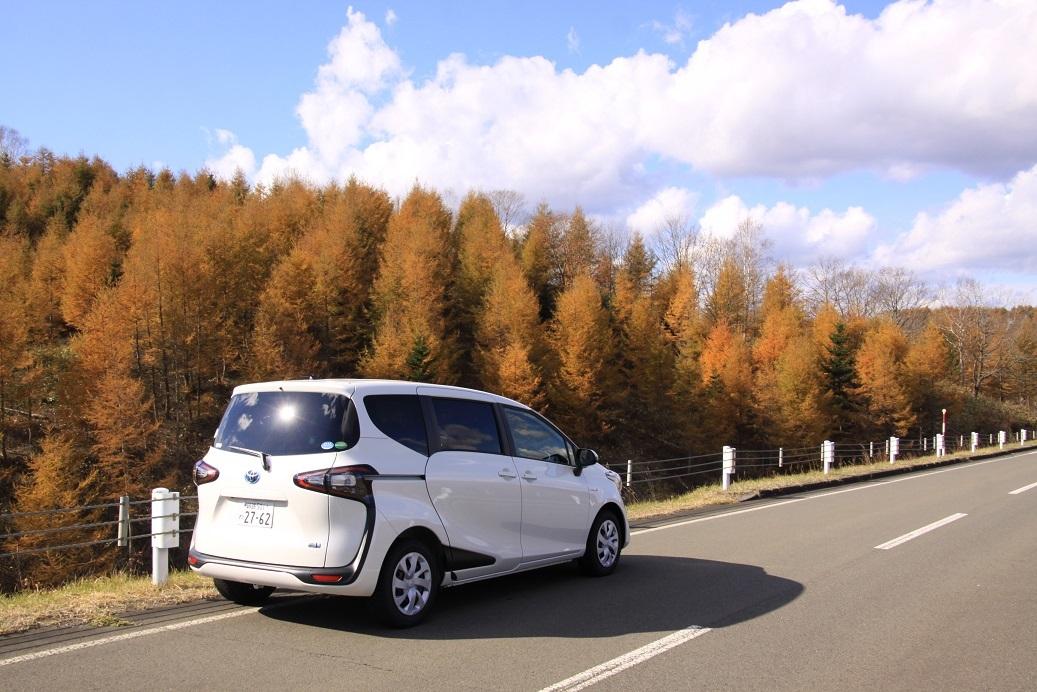 オリンピックマラソン釧路っていうのは・・。11月3日_f0113639_15013967.jpg