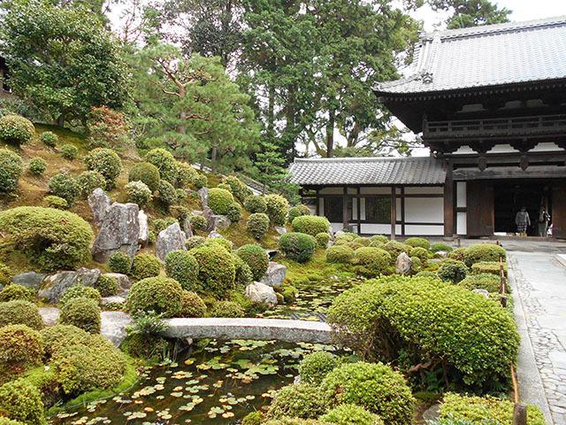 京都・東福寺(10月21日 月 2019年)_a0099744_13393599.jpg