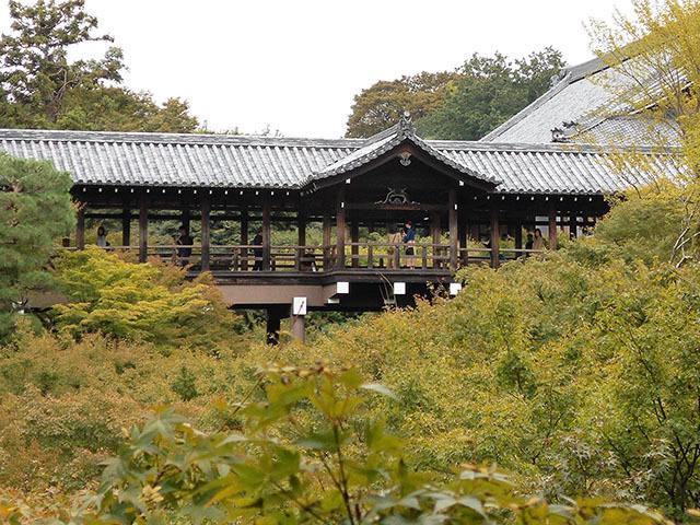 京都・東福寺(10月21日 月 2019年)_a0099744_13414031.jpg