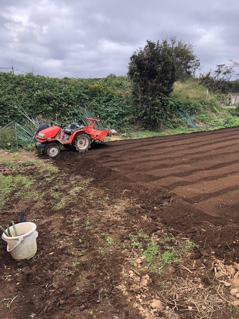 今朝は3人体制 畝を6本一気に作りました 蚕豆 エンドウ豆 スナップエンドウ 蕪 ほうれん草の畝です_c0222448_11574507.jpg