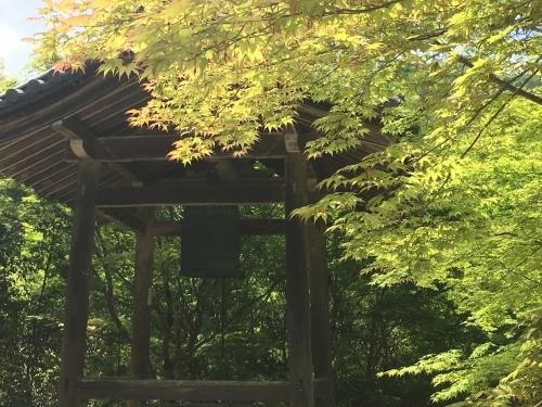 京都の旅\'19Ⅳ 京都青楓その2_e0326953_23502233.jpg