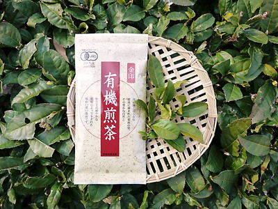 菊池水源茶 ティパック入り煎茶「オフィスティー」販売開始!_a0254656_17163559.jpg