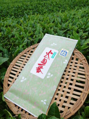 菊池水源茶 ティパック入り煎茶「オフィスティー」販売開始!_a0254656_17372161.jpg