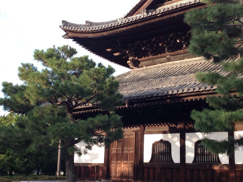 令和 文化の日『形の素』展 両足院 坐禅の会_b0153663_17492020.jpeg