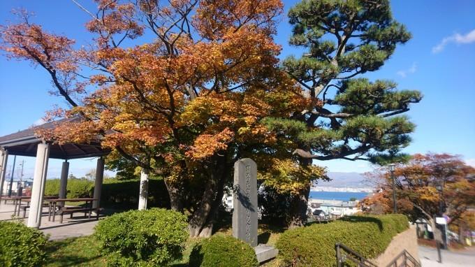 函館元町公園の紅葉_b0106766_16293941.jpg