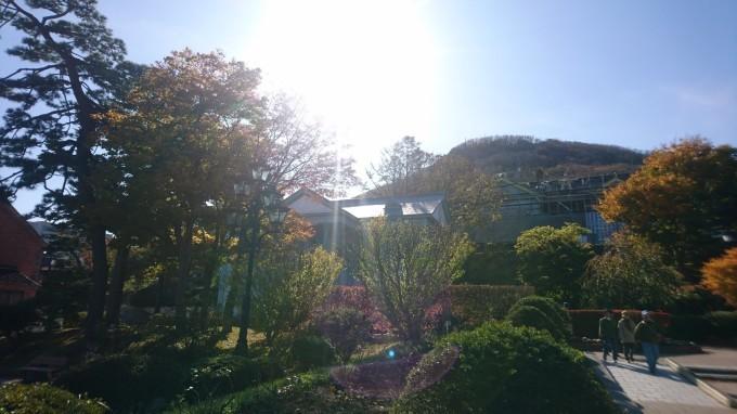 函館元町公園の紅葉_b0106766_16294071.jpg