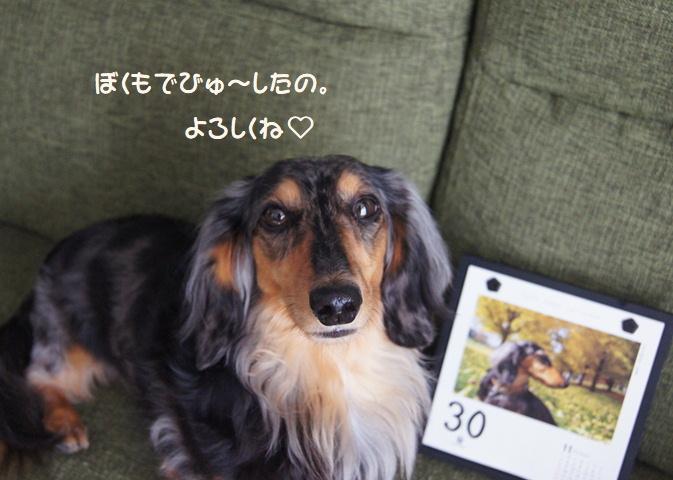 うなも2020でびゅう☆彡そしてなつぞら_f0195891_15511349.jpg