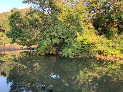 自宅から歩いて近い、久良岐公園を散策しました。_a0112393_14443566.jpg