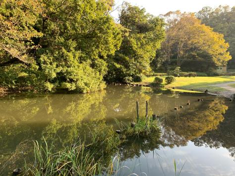 自宅から歩いて近い、久良岐公園を散策しました。_a0112393_14443573.jpg