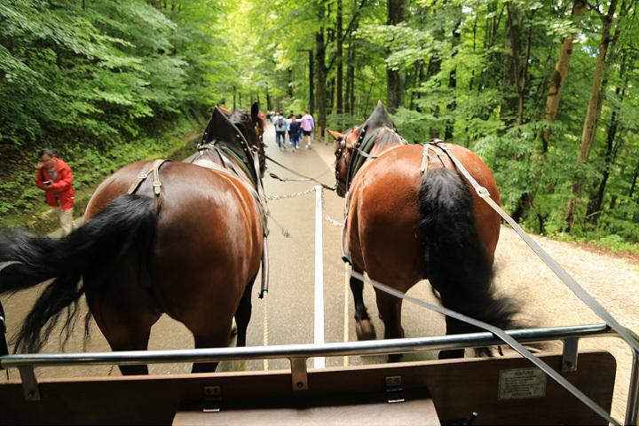 ドイツロマンチック街道の旅_c0313595_03504402.jpg