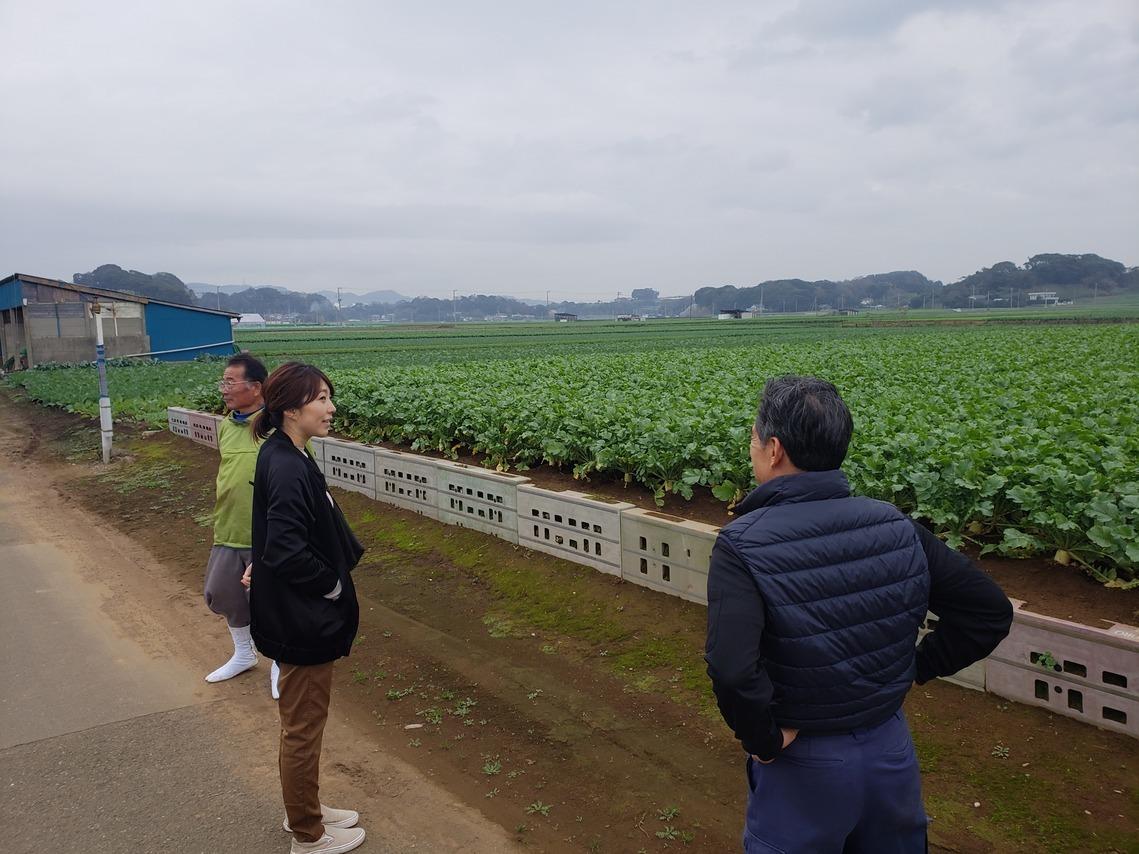 三浦の楮栽培_a0101801_00521690.jpg