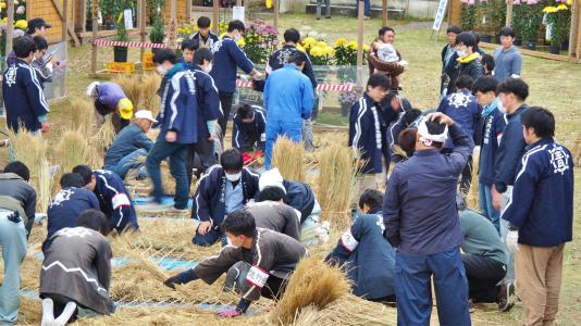 菊まつり 境内では「ねこかき」が行われていました_c0336902_16393466.jpg