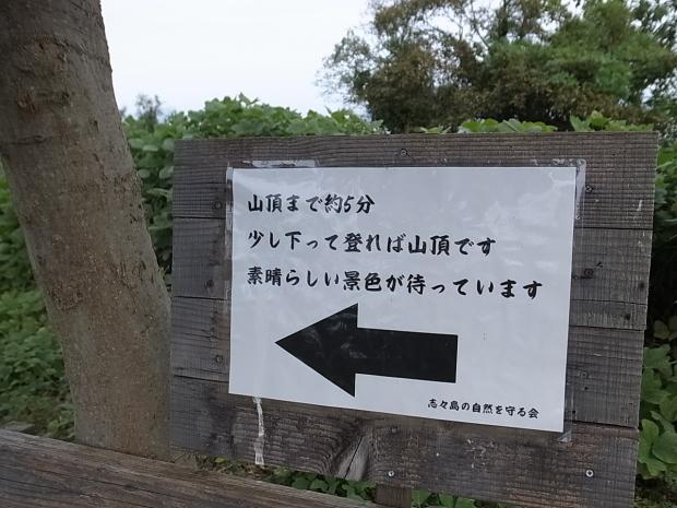 志々島@香川県三豊市_f0197703_14292080.jpg