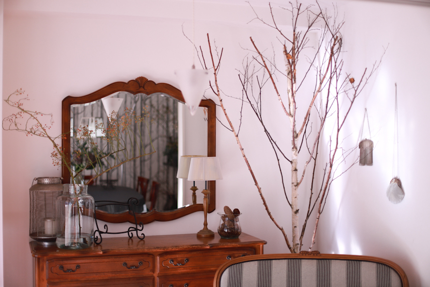 白樺のある暮らし_b0208604_16040996.jpg