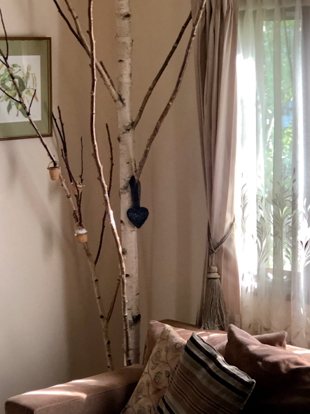 白樺のある暮らし_b0208604_16051091.jpg