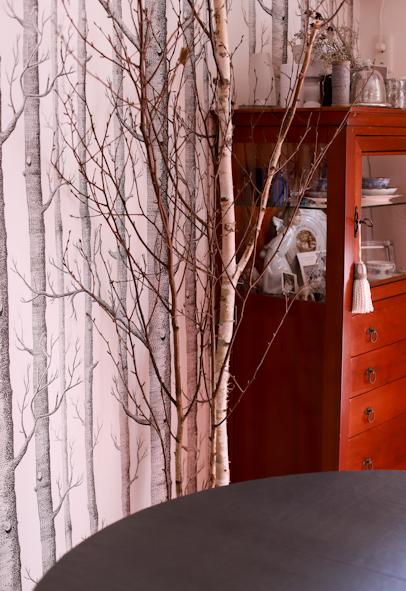 白樺のある暮らし_b0208604_16125587.jpg