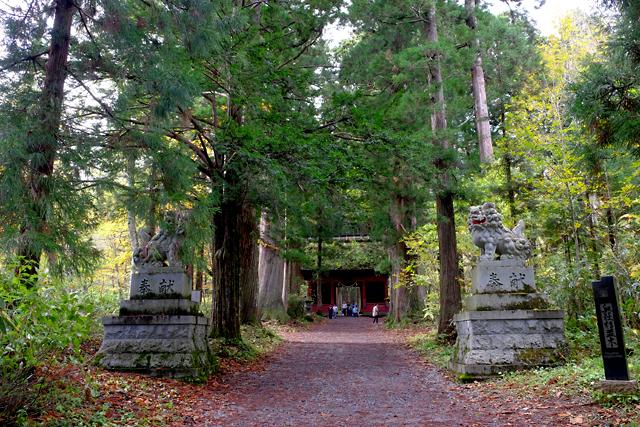戸隠神社とお蕎麦!_f0179404_11172069.jpg