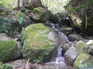 国見岳…尾西谷右俣と左岸尾根_c0359615_22591219.jpg