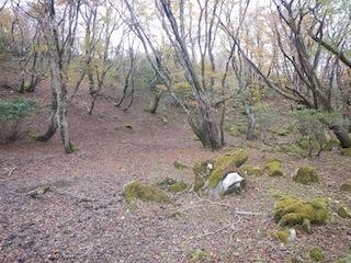 国見岳…尾西谷右俣と左岸尾根_c0359615_23070244.jpg