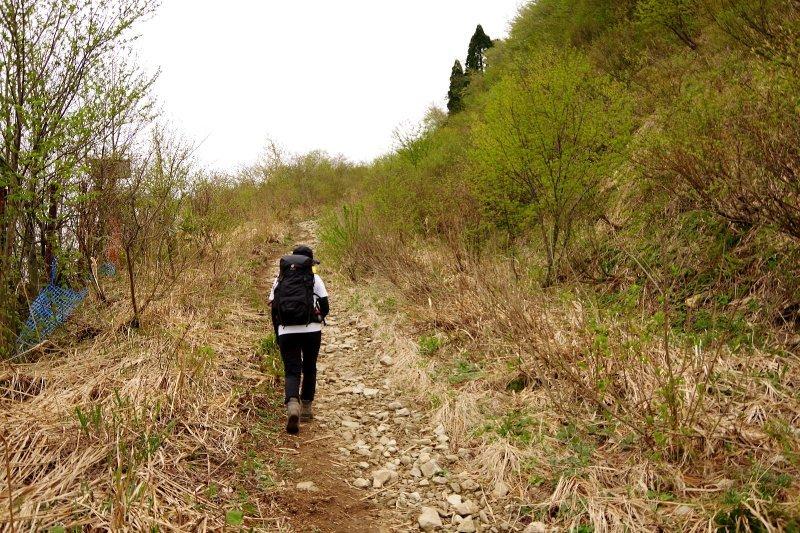 福井の荒島岳!_a0165316_19582400.jpg