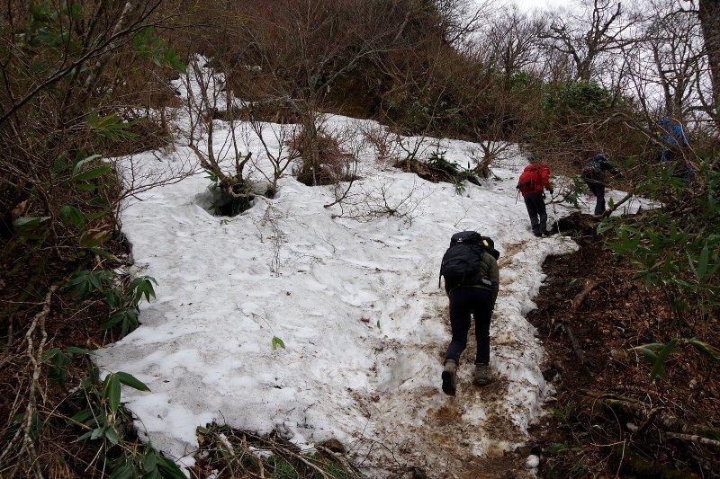 福井の荒島岳!_a0165316_20013889.jpg