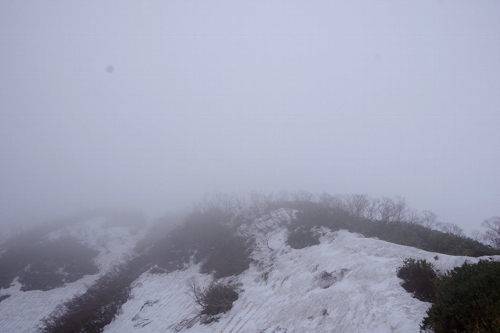 福井の荒島岳!_a0165316_20013950.jpg