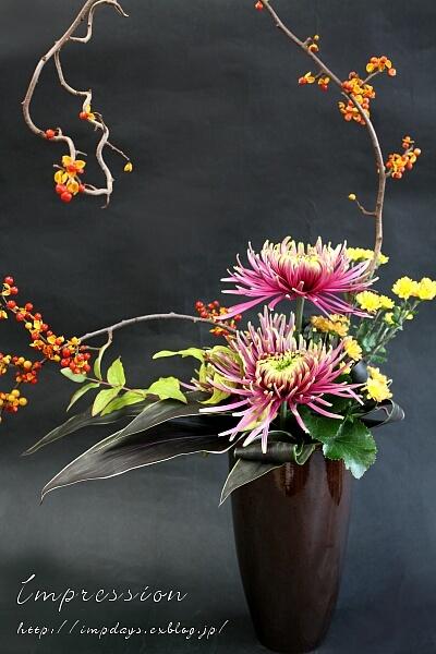 定期装花から ツルウメモドキ_a0085317_19492500.jpg