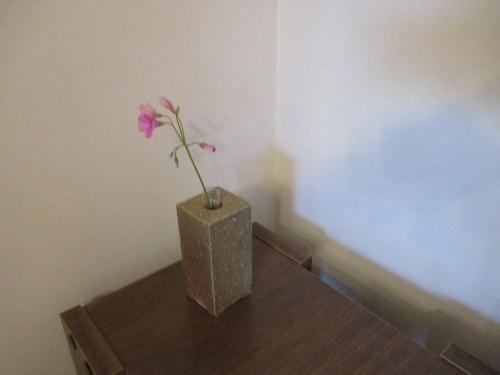 先日は文化の日ということで 益子陶器市に行ってきました&サーフィンも^^_b0123820_15411881.jpg