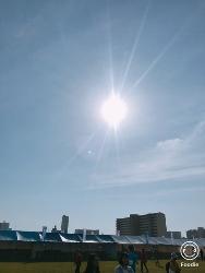 淀川マラソン_a0059035_15202332.jpg